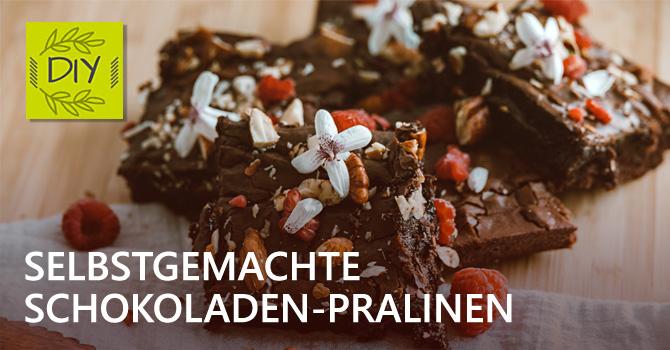 DIY FairTrade Schoko-Pralinen – Exklusive Pralinen-Rezepte zum Nachnaschen