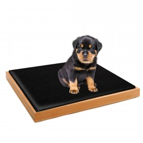 Set of LUNA design dog bed beech natural, 80 x 60 cm plus inlay