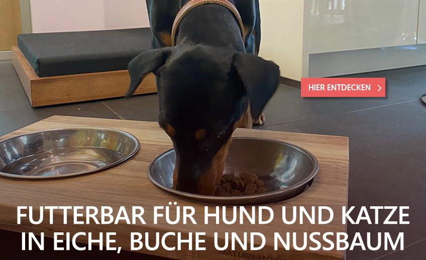 Futterbar für Hunde